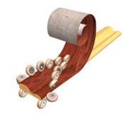 Станок для облицовывания погонажных изделий WoodTec PROFILINER Станок WoodTec PROFILINER WoodTec PROFILINER